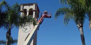 Bee Removal Tustin CA Difficult bee removal using a 
